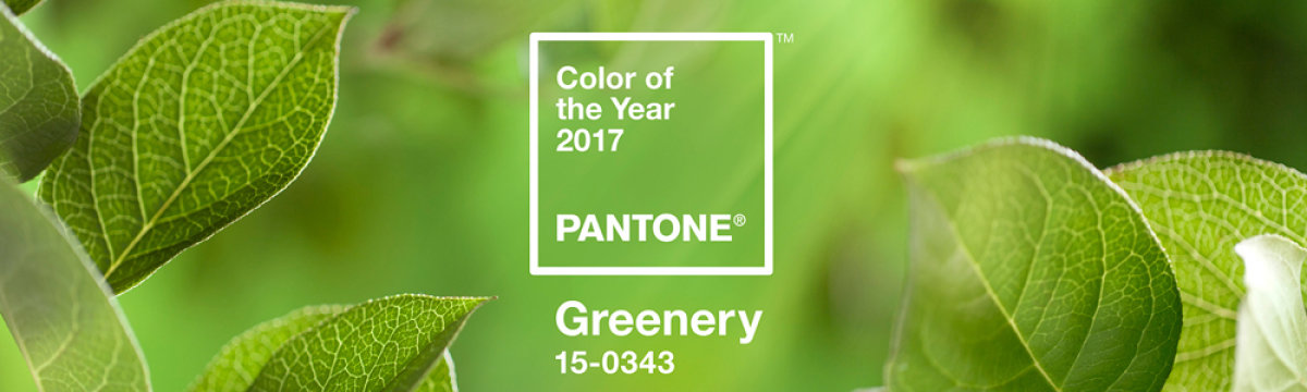 Green should always be seen! PANTONE's Colour of the Year 2017