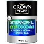 Steracryl Anti-Bacterial Durable Acrylic Eggshell White