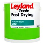 Fast Drying Satin Brilliant White