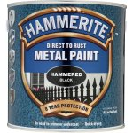 Direct to Rust Metal Paint Hammered Black