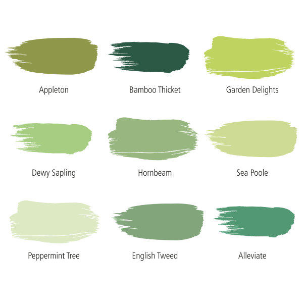 10% off Albany Green palette